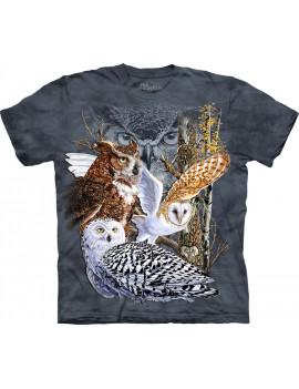 Find 11 Owls