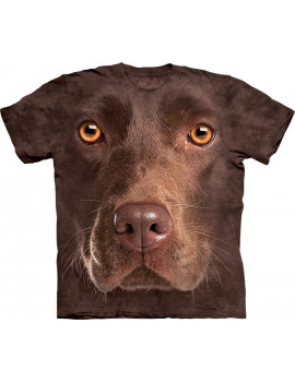 Chocolate Lab Face