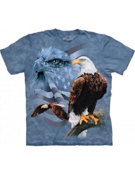Faded Flag Eagles